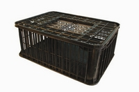 Poultry & small animal transportation cages.