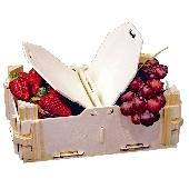 Fruit punnet Display  Basket